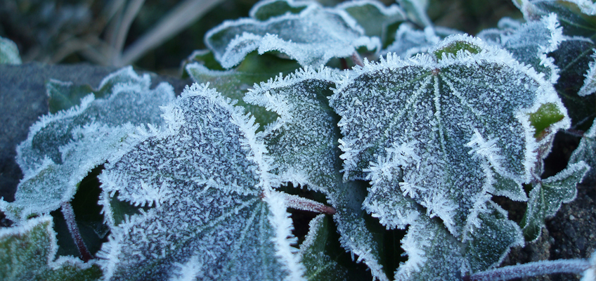 Icy conditions set to hit the UK